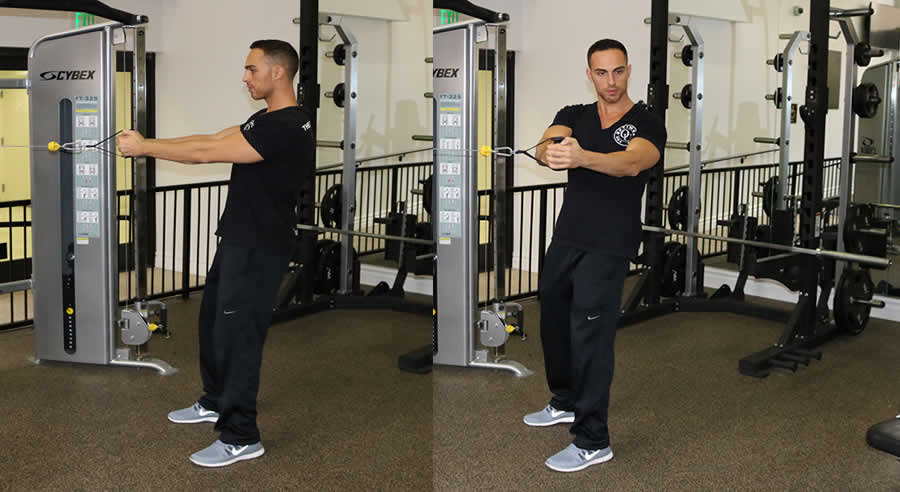 Cable Oblique Twists Exercise - The Optimal You | Online ... Oblique Exercises Cable