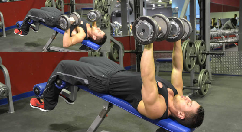 Decline Dumbbell Press Performed by Male Personal Trainer