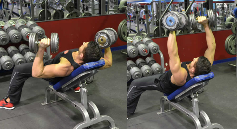 Modified Incline Dumbbell Press Performed by Male Personal Trainer
