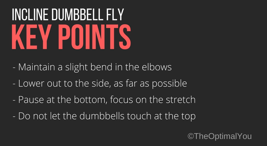 Key points when performing incline dumbbell fly exercise