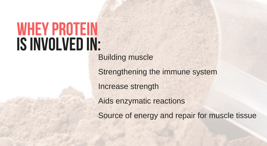 Protein involded in: building muscle, immune system, strenght, enzymatic reactions, source of enerygy and muscle tissue
