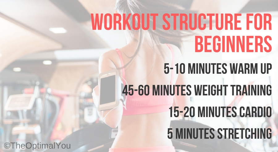 Workout structure for beginners including a warmup, weight training, cardio and stretching