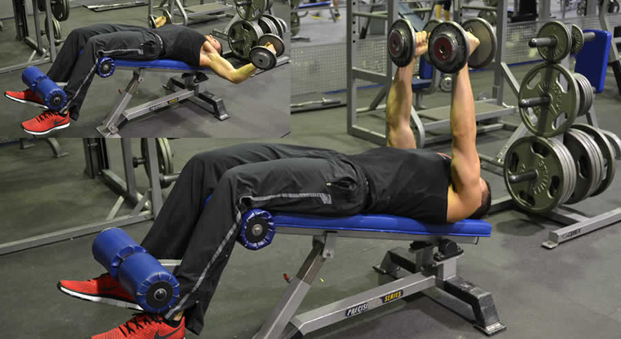 Decline Dumbbell Fly Exercise The Optimal You