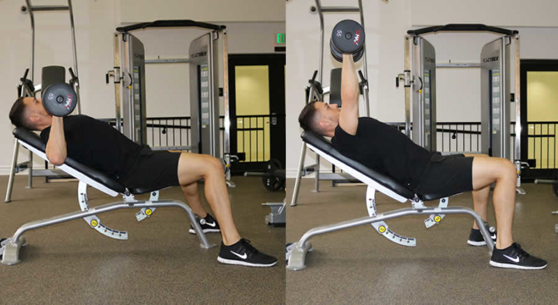 incline dumbbell press the optimal you online personal training