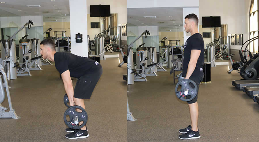Stiff Leg Deadlift Performed By Male Personal Trainer